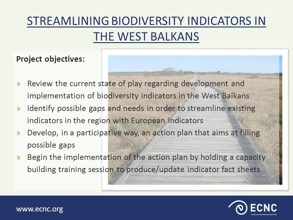 www.ecnc.org Project objectives: »Review the current state of play regarding development and implementation of biodiversity indicators in the West Balkans »Identify possible gaps and needs in order to streamline existing indicators in the region with European indicators »Develop, in a participative way, an action plan that aims at filling possible gaps »Begin the implementation of the action plan by holding a capacity building training session to produce/update indicator fact sheets STREAMLINING BIODIVERSITY INDICATORS IN THE WEST BALKANS