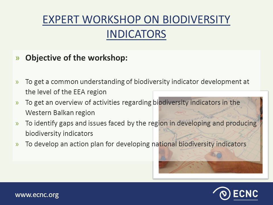 www.ecnc.org »Objective of the workshop: »To get a common understanding of biodiversity indicator development at the level of the EEA region »To get an overview of activities regarding biodiversity indicators in the Western Balkan region »To identify gaps and issues faced by the region in developing and producing biodiversity indicators »To develop an action plan for developing national biodiversity indicators EXPERT WORKSHOP ON BIODIVERSITY INDICATORS