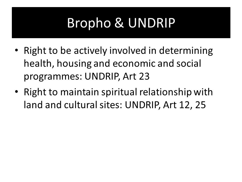Bropho & UNDRIP Right to be actively involved in determining health, housing and economic and social programmes: UNDRIP, Art 23 Right to maintain spiritual relationship with land and cultural sites: UNDRIP, Art 12, 25