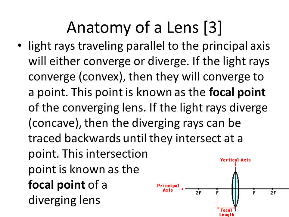 Anatomy of a Lens [3] light rays traveling parallel to the principal axis will either converge or diverge. If the light rays converge (convex), then t