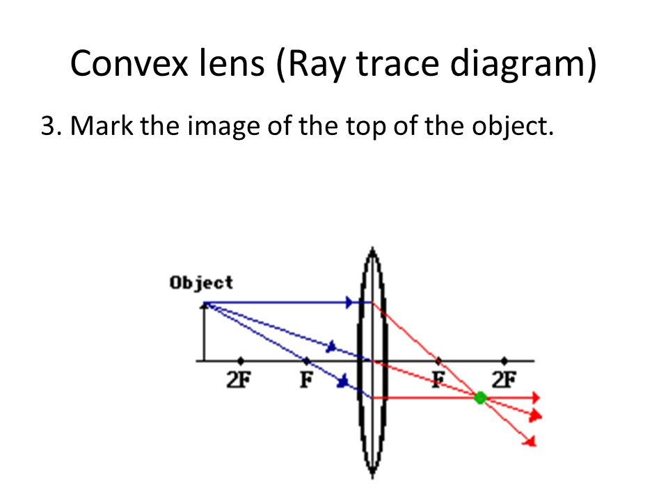 Convex lens (Ray trace diagram) 3. Mark the image of the top of the object.