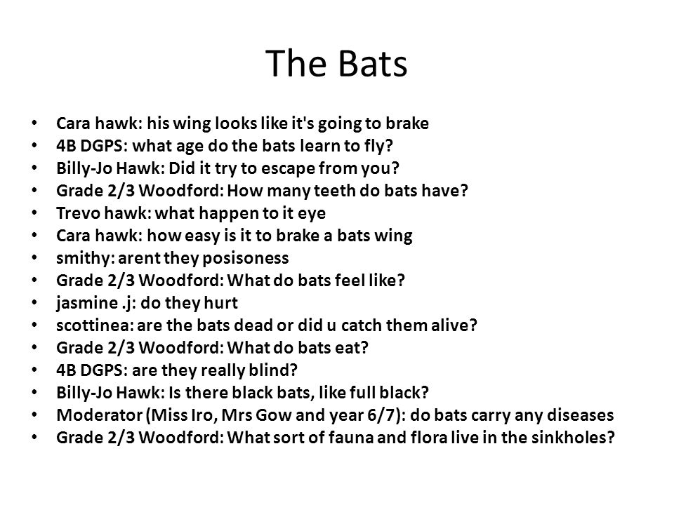 The Bats Cara hawk: his wing looks like it s going to brake 4B DGPS: what age do the bats learn to fly.