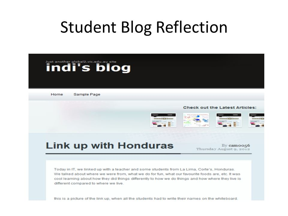 Student Blog Reflection