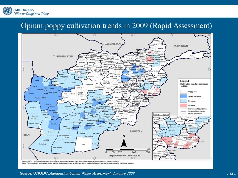 - 14 - Opium poppy cultivation trends in 2009 (Rapid Assessment) Source: UNODC, Afghanistan Opium Winter Assessment, January 2009
