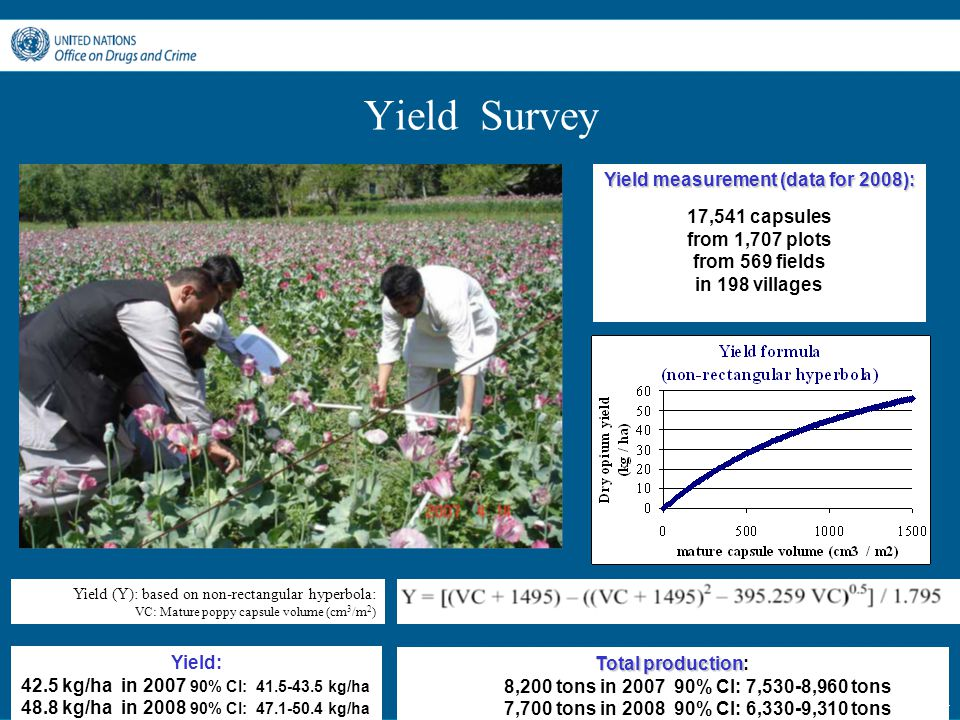 - 17 - Yield Survey Yield measurement (data for 2008): 17,541 capsules from 1,707 plots from 569 fields in 198 villages Yield: 42.5 kg/ha in 2007 90%