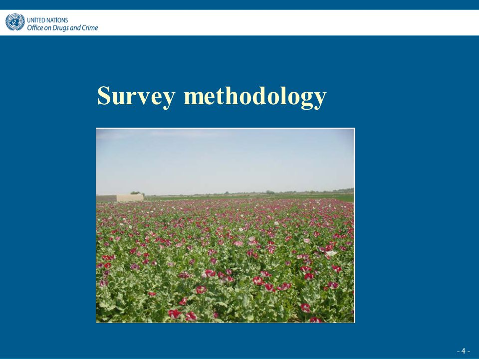 - 4 - Survey methodology