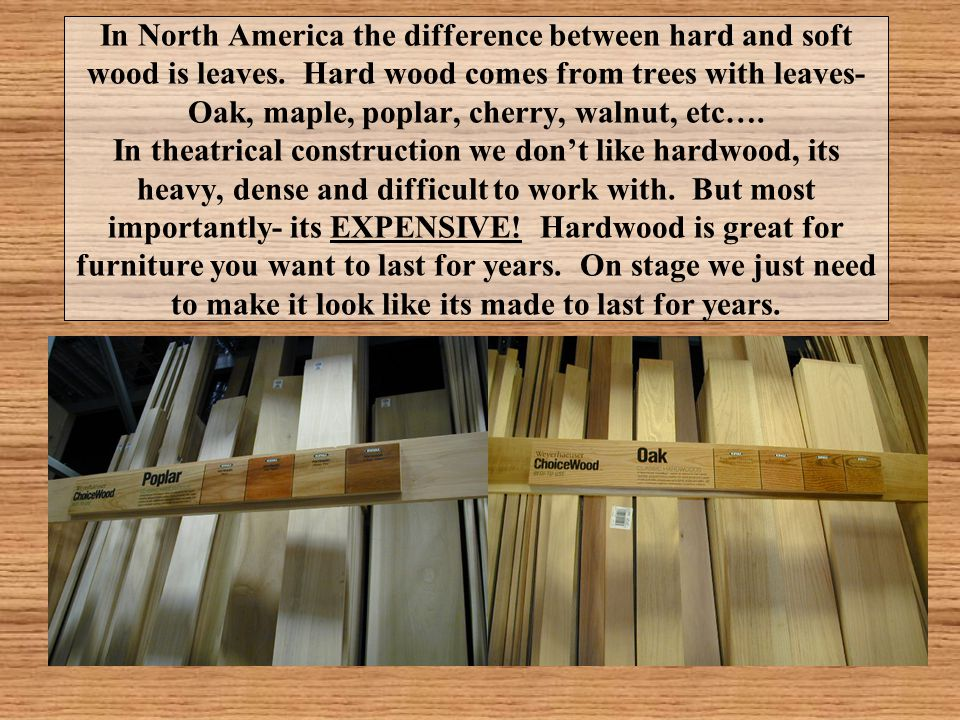 In North America the difference between hard and soft wood is leaves. Hard wood comes from trees with leaves- Oak, maple, poplar, cherry, walnut, etc…