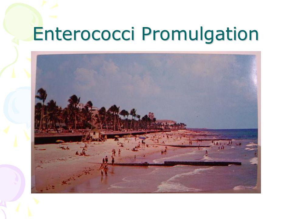 Enterococci Promulgation