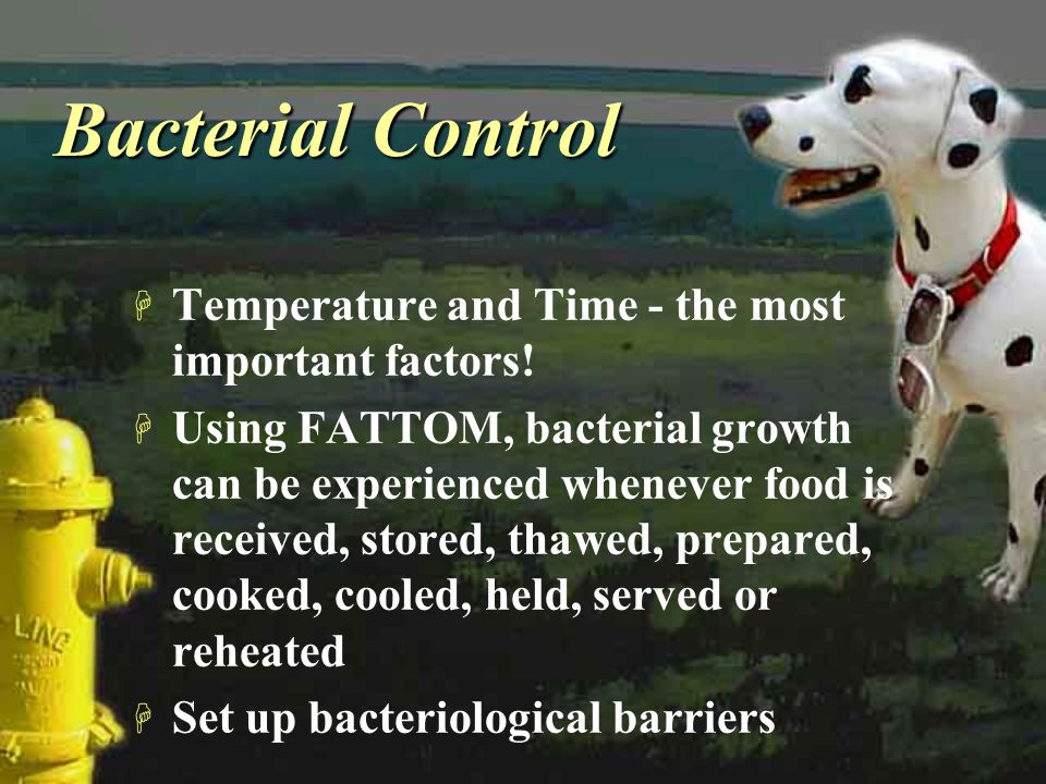 Bacterial Control H Temperature and Time - the most important factors! H Using FATTOM, bacterial growth can be experienced whenever food is received,