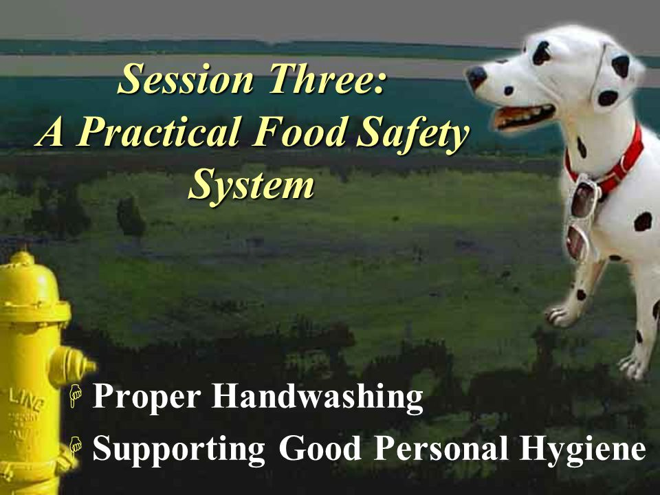 Session Three: A Practical Food Safety System H Proper Handwashing H Supporting Good Personal Hygiene H Proper Handwashing H Supporting Good Personal