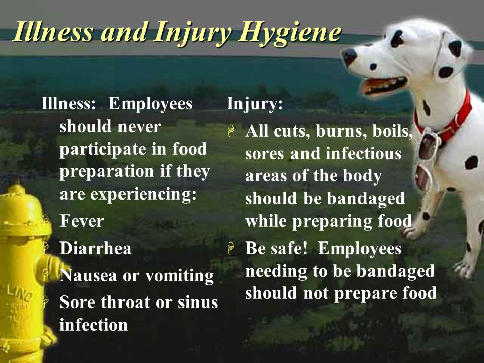 Illness and Injury Hygiene Illness: Employees should never participate in food preparation if they are experiencing: H Fever H Diarrhea H Nausea or vo