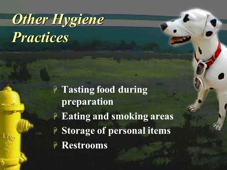 Other Hygiene Practices H Tasting food during preparation H Eating and smoking areas H Storage of personal items H Restrooms H Tasting food during pre