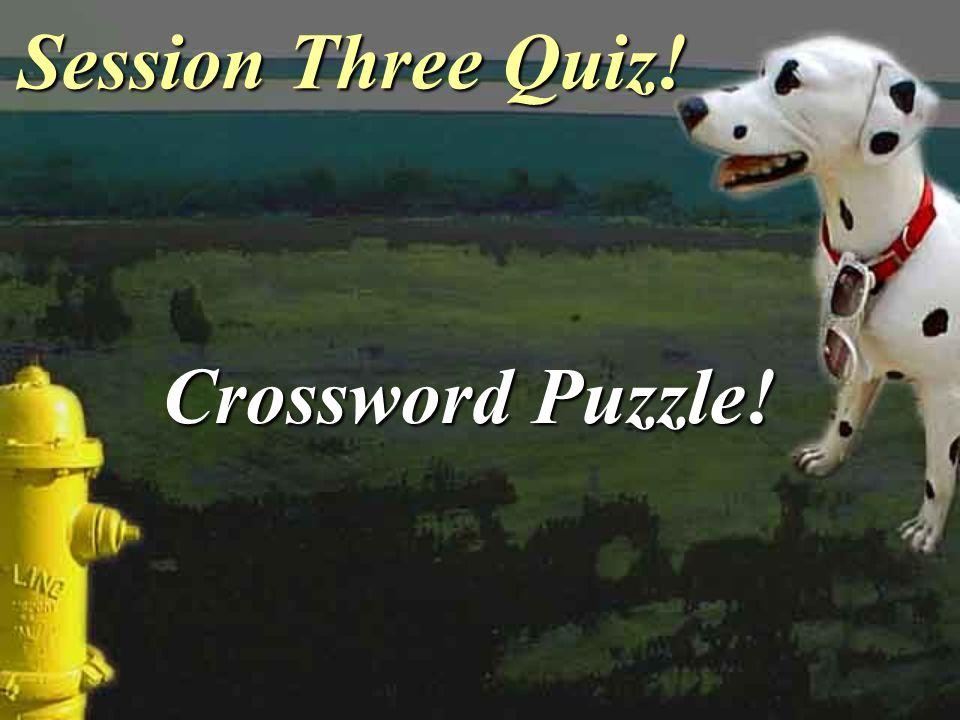Session Three Quiz! Crossword Puzzle!