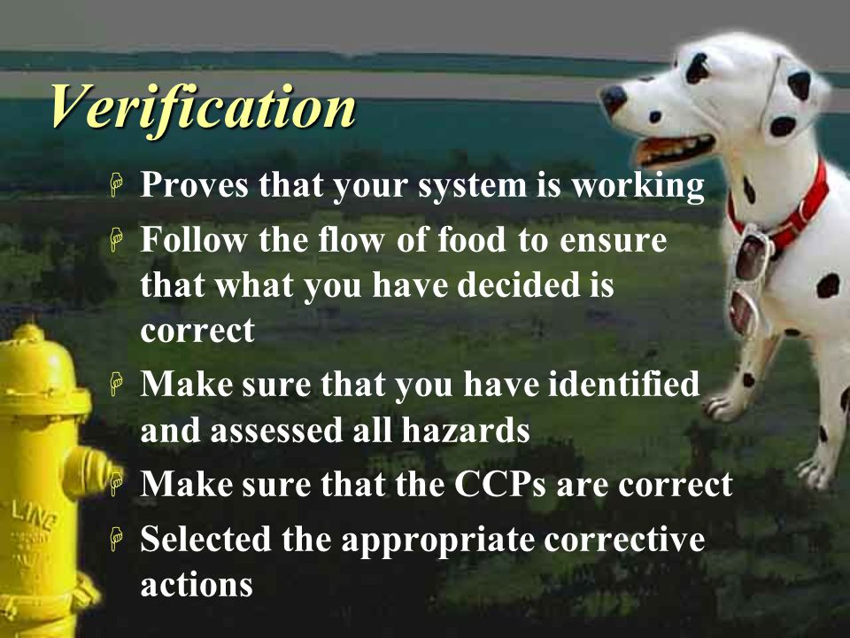 VerificationVerification H Proves that your system is working H Follow the flow of food to ensure that what you have decided is correct H Make sure th