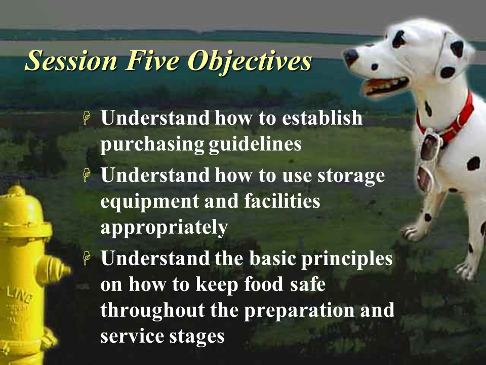 Session Five Objectives H Understand how to establish purchasing guidelines H Understand how to use storage equipment and facilities appropriately H U