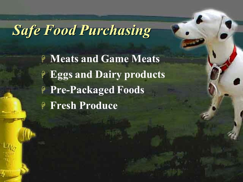 Safe Food Purchasing H Meats and Game Meats H Eggs and Dairy products H Pre-Packaged Foods H Fresh Produce H Meats and Game Meats H Eggs and Dairy pro