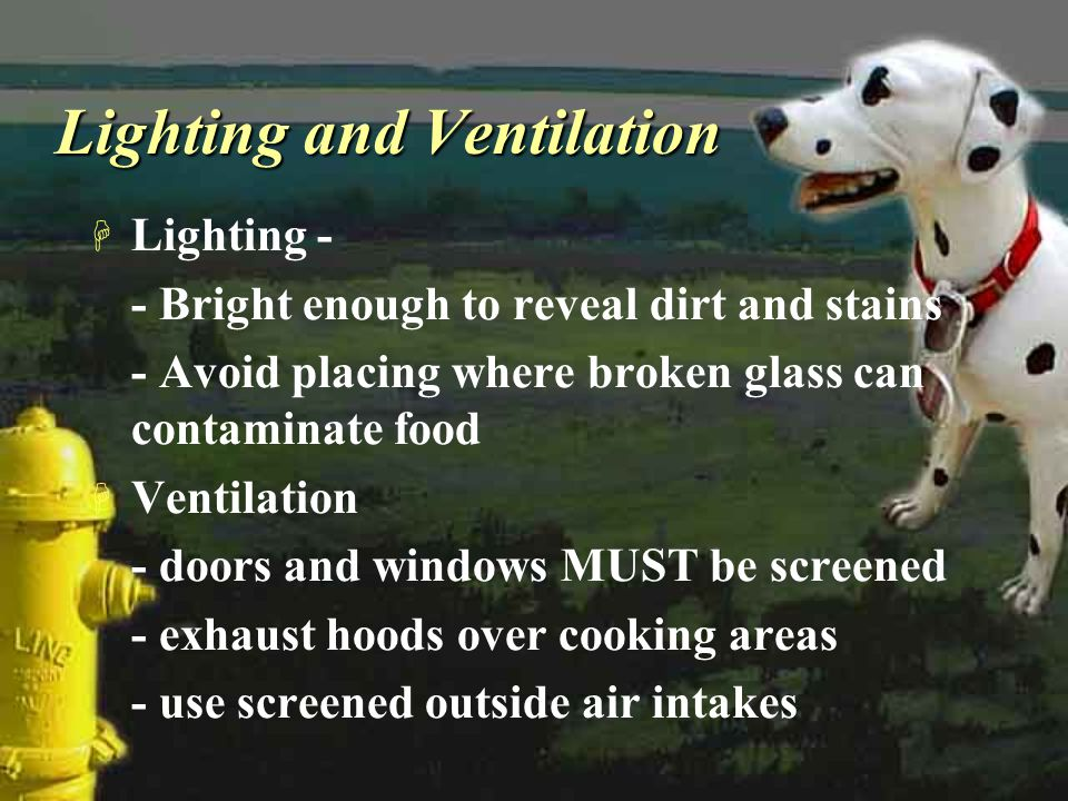 Lighting and Ventilation H Lighting - - Bright enough to reveal dirt and stains - Avoid placing where broken glass can contaminate food H Ventilation