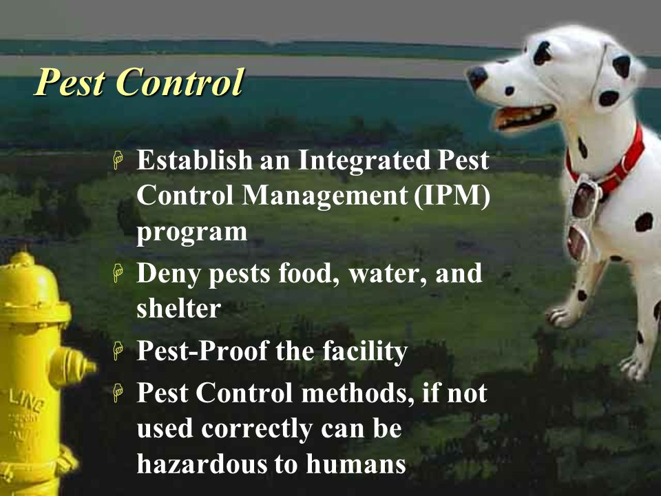 Pest Control H Establish an Integrated Pest Control Management (IPM) program H Deny pests food, water, and shelter H Pest-Proof the facility H Pest Co