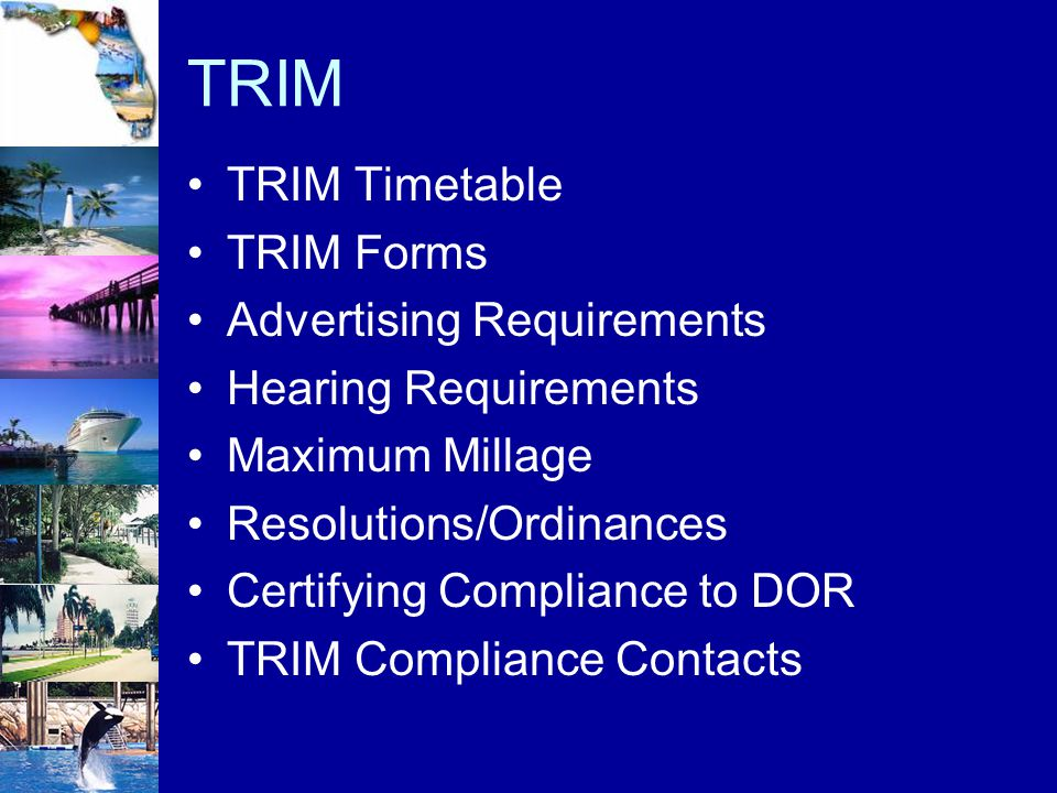 TRIM TRIM Timetable TRIM Forms Advertising Requirements Hearing Requirements Maximum Millage Resolutions/Ordinances Certifying Compliance to DOR TRIM