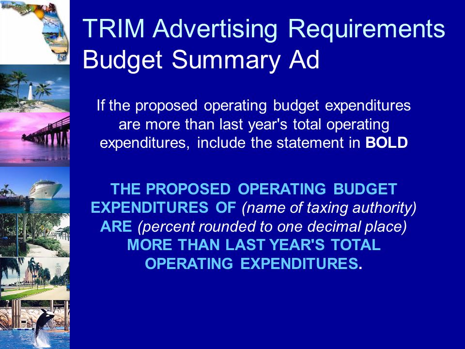 TRIM Advertising Requirements Budget Summary Ad If the proposed operating budget expenditures are more than last year's total operating expenditures,