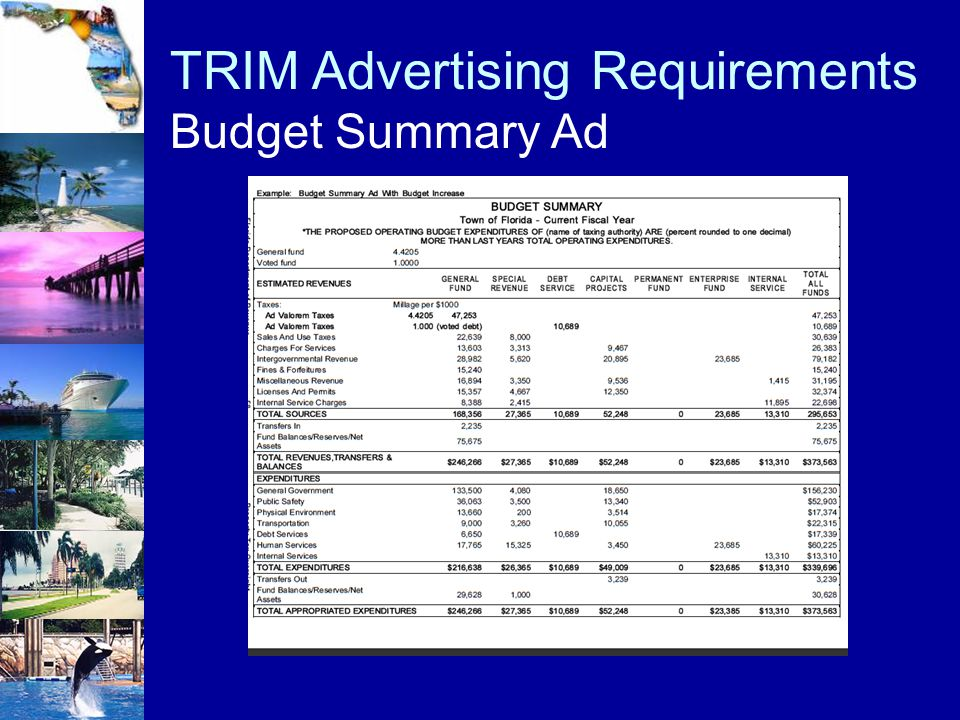 TRIM Advertising Requirements Budget Summary Ad