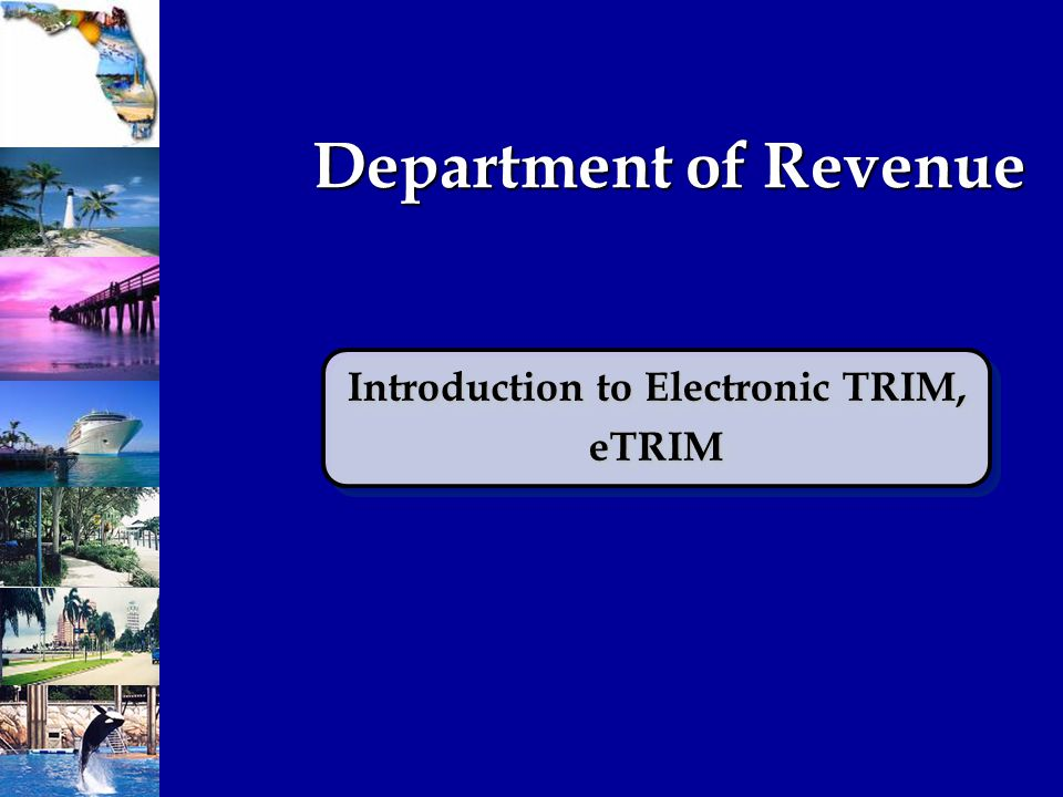 eTRIM System Department of Revenue's internet based system used to complete and submit Truth-in-Millage & Maximum Millage documents