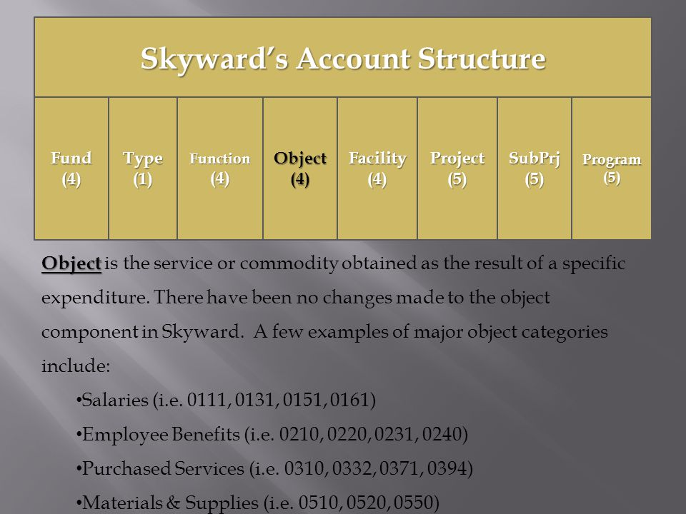 Skyward's Account Structure Fund(4)Function(4)Object(4)Facility(4)Project(5)SubPrj(5)Type(1)Program(5) Object Object is the service or commodity obtained as the result of a specific expenditure.