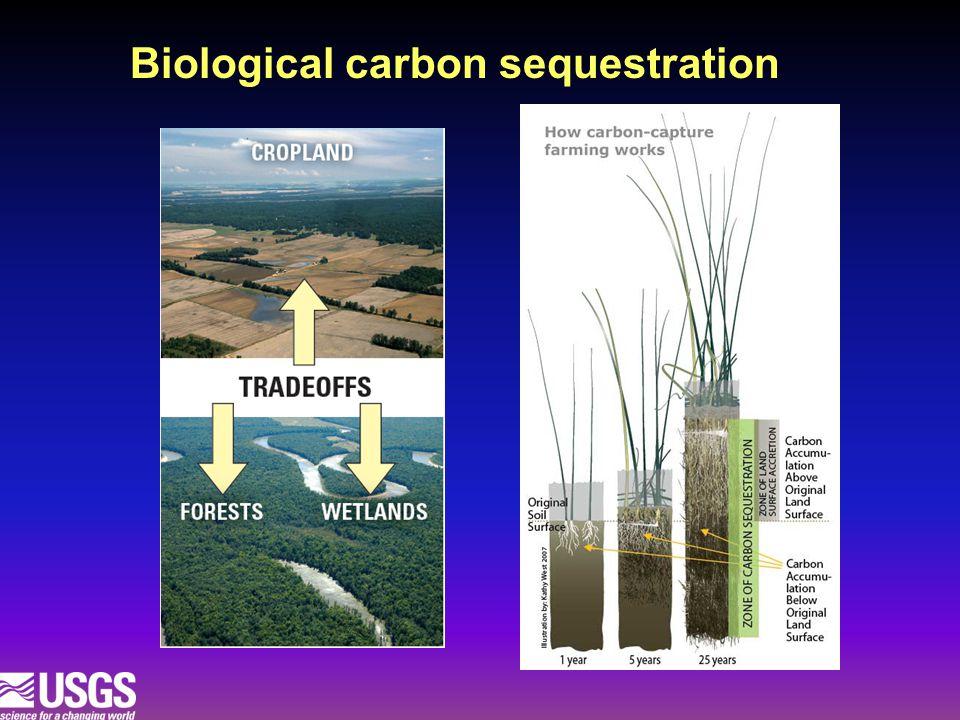 Biological carbon sequestration