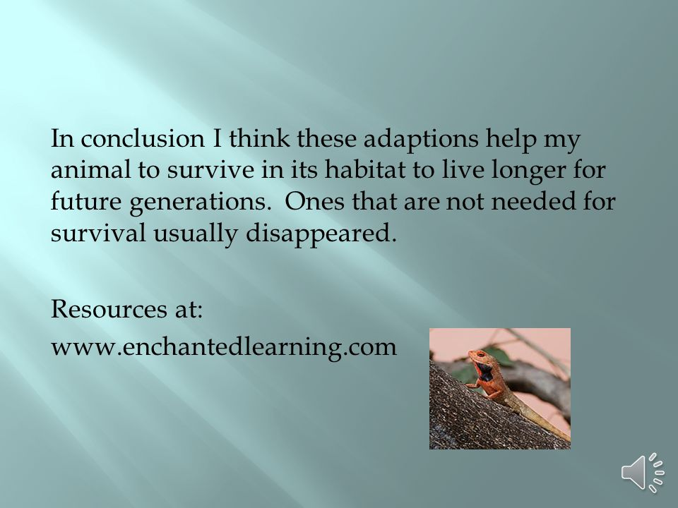 In conclusion I think these adaptions help my animal to survive in its habitat to live longer for future generations.