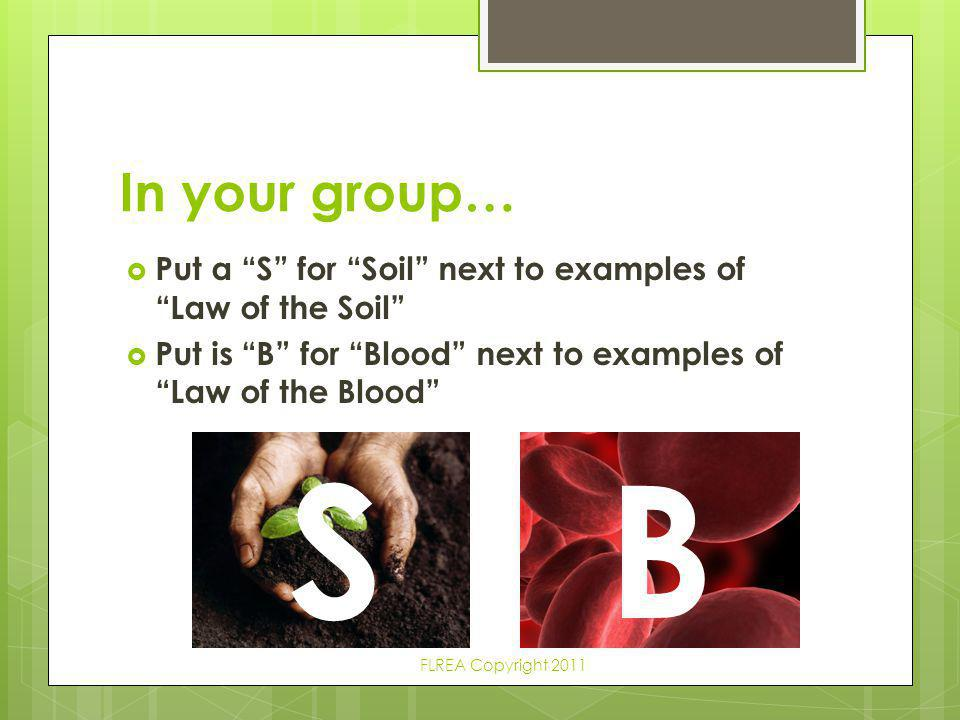 """In your group…  Put a """"S"""" for """"Soil"""" next to examples of """"Law of the Soil""""  Put is """"B"""" for """"Blood"""" next to examples of """"Law of the Blood"""" SB FLREA C"""