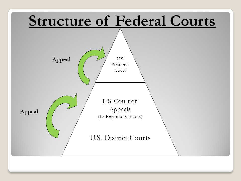 U.S. Supreme Court U.S. Court of Appeals (12 Regional Circuits) U.S. District Courts Appeal Structure of Federal Courts Appeal