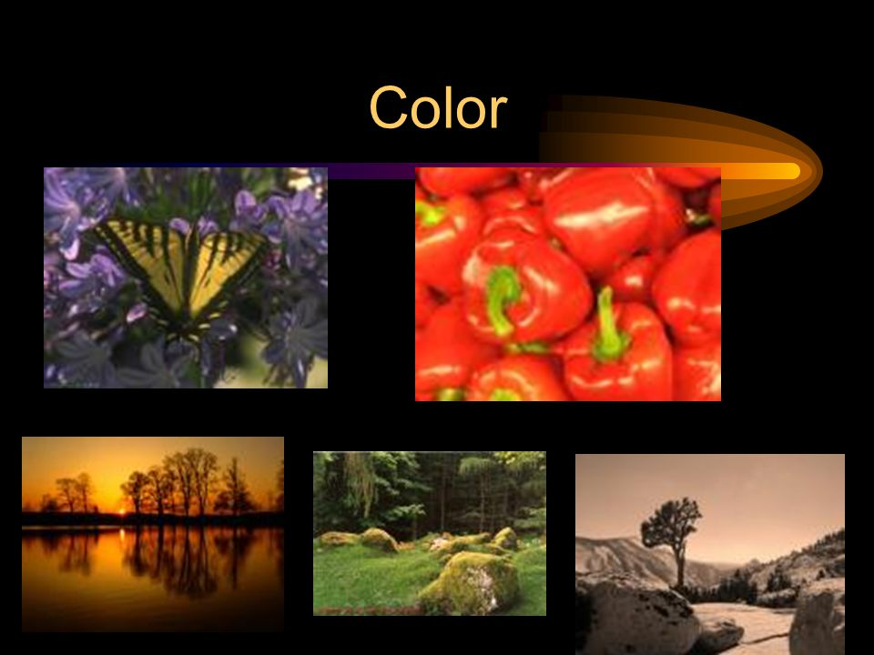Color Artistic term is HUE Need light to see color. Primary, Secondary, Intermediates. Use color schemes to enhance appeal or make impact.
