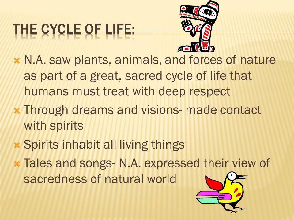  N.A. saw plants, animals, and forces of nature as part of a great, sacred cycle of life that humans must treat with deep respect  Through dreams an