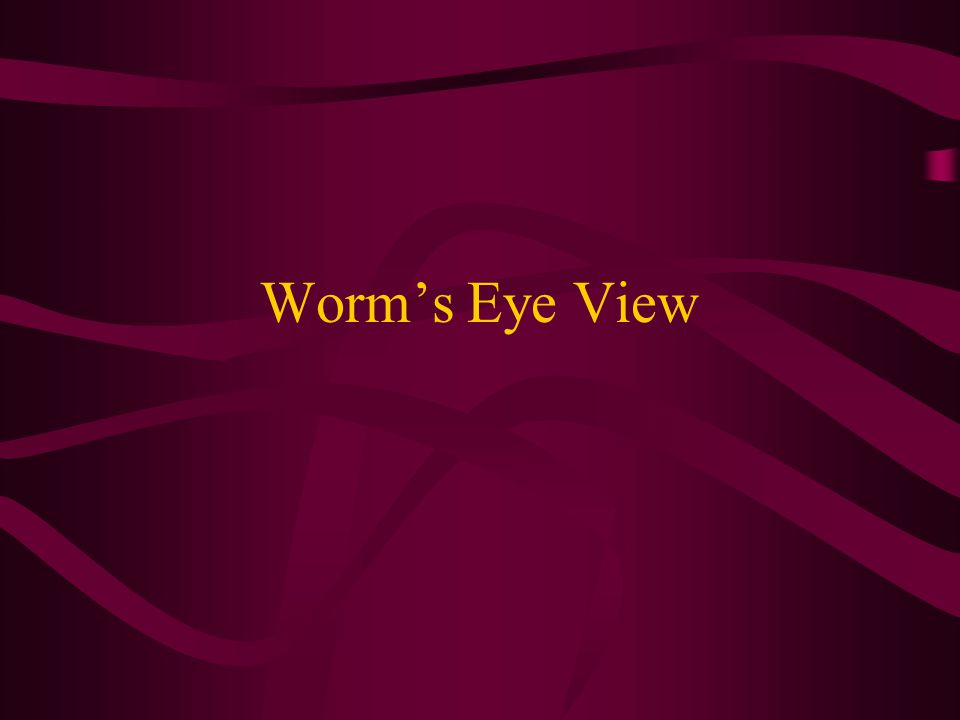 Angles – Different Perspectives Give more interest or impact to a photo by changing up the way it's usually viewed. (Normal Eye Level) Worm's Eye Bird