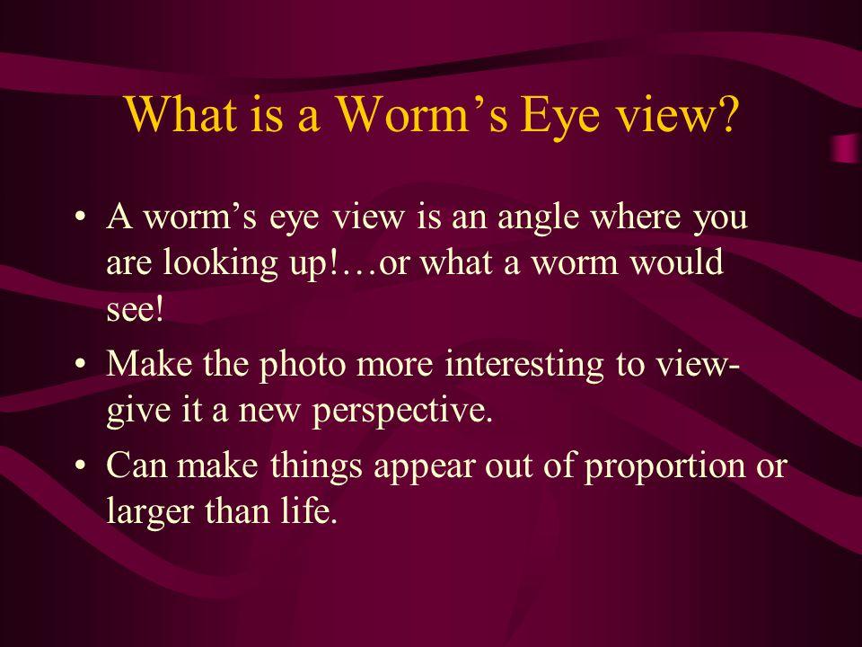 Worm's Eye View