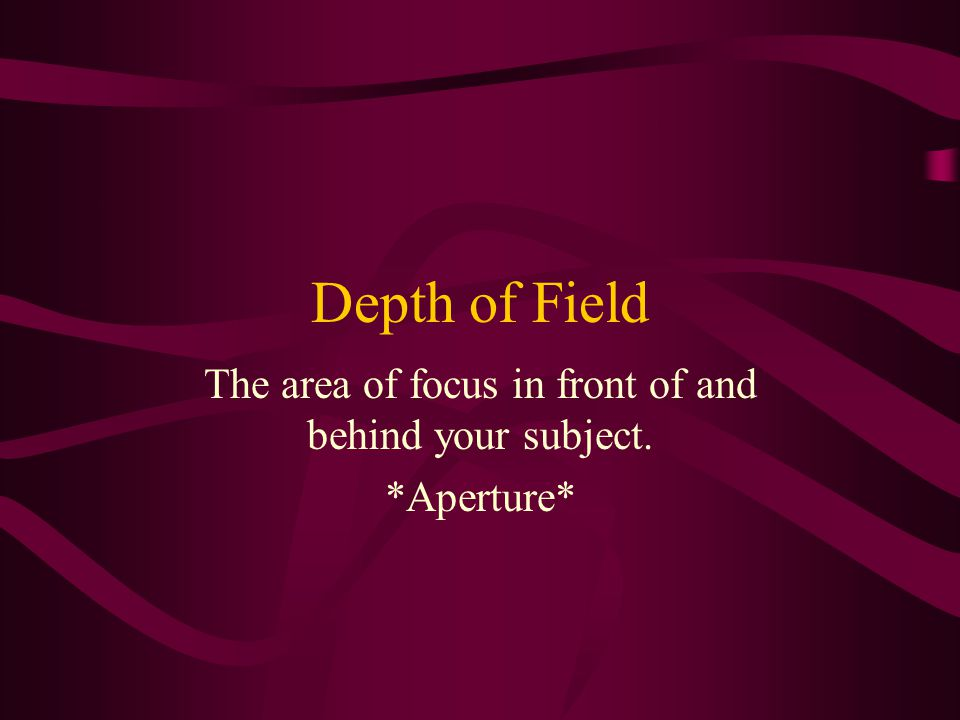 Depth of Field The area of focus in front of and behind your subject. *Aperture*