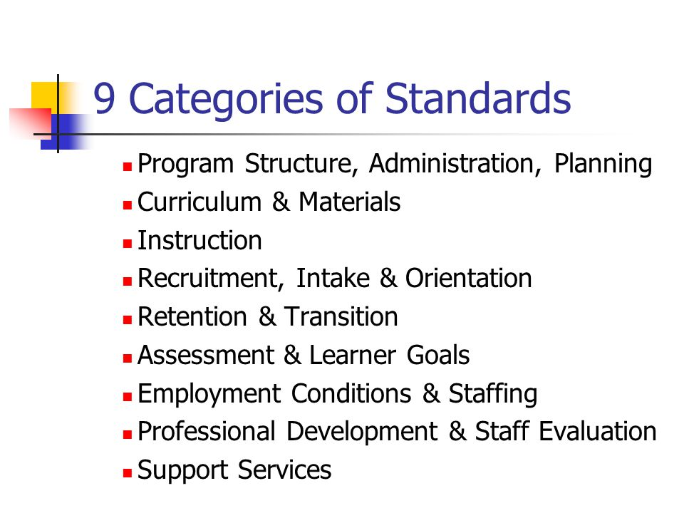 Table of Contents Program Narratives Large, Institution-Based Program Small, Volunteer-Based Program Self-Review Instrument Samples Summary Scores Action Plan Discussion of Scores