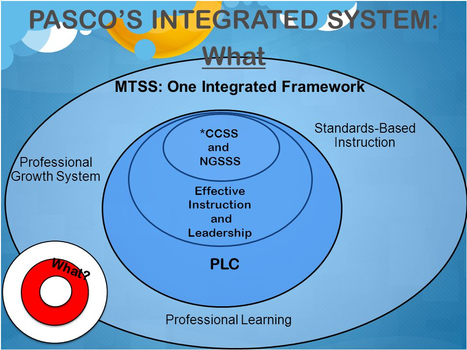 Professional Growth System Standards-Based Instruction Professional Learning MTSS: One Integrated Framework *CCSS and NGSSS PLC Effective Instruction