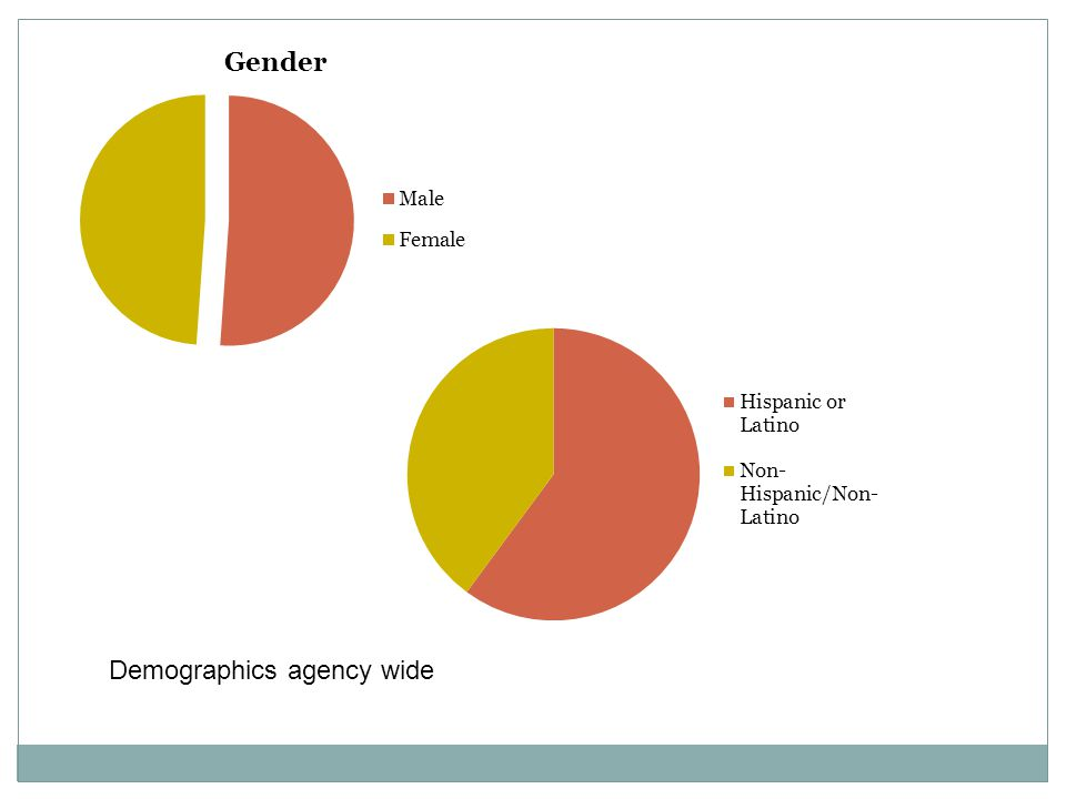 Demographics agency wide