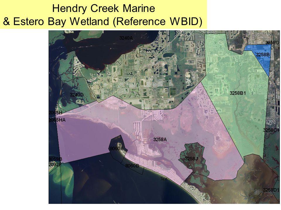 Hendry Creek Marine & Estero Bay Wetland (Reference WBID)