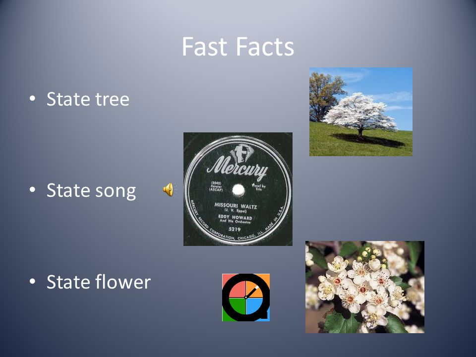 Fast Facts State tree State song State flower