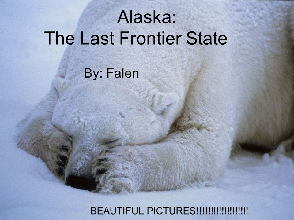State Facts Flower – Forget Me Nots Bird - Willow Ptarmigan Tree - Sitka Spruce Principal River - Yukon River