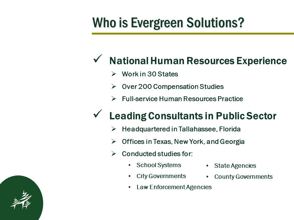 Who is Evergreen Solutions.