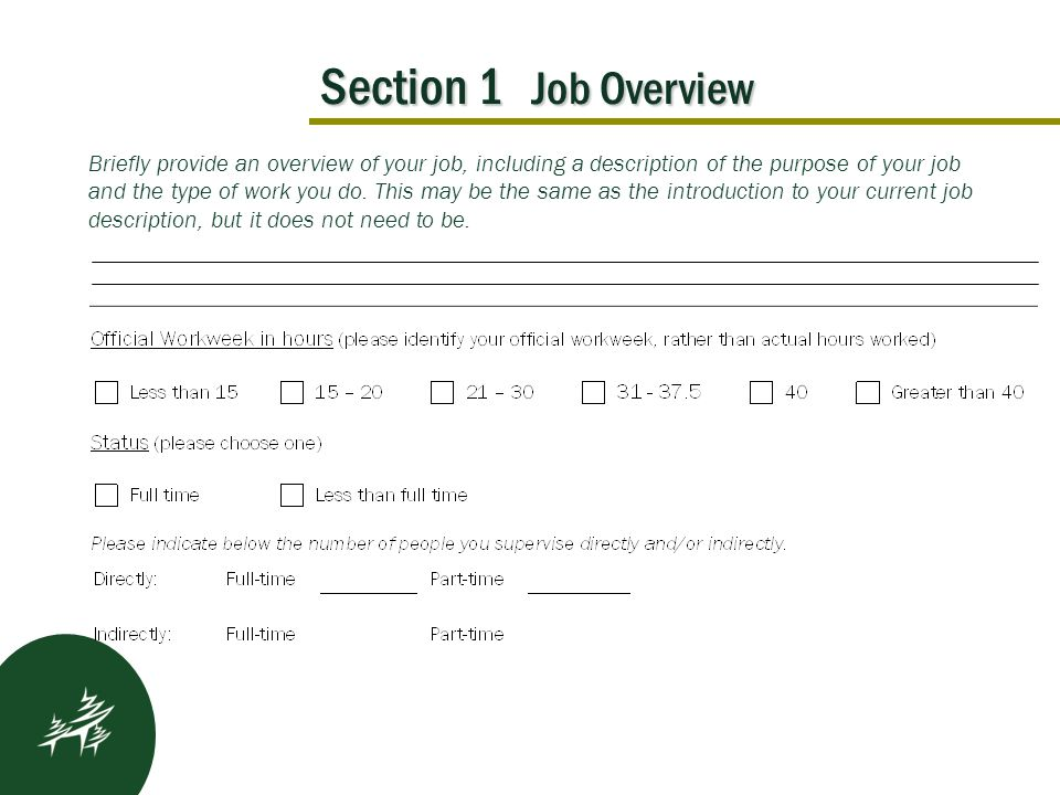 Section 1 Job Overview Kickoff Results After Briefly provide an overview of your job, including a description of the purpose of your job and the type of work you do.