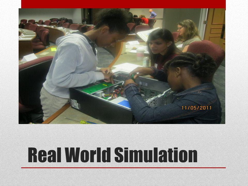 Real World Simulation