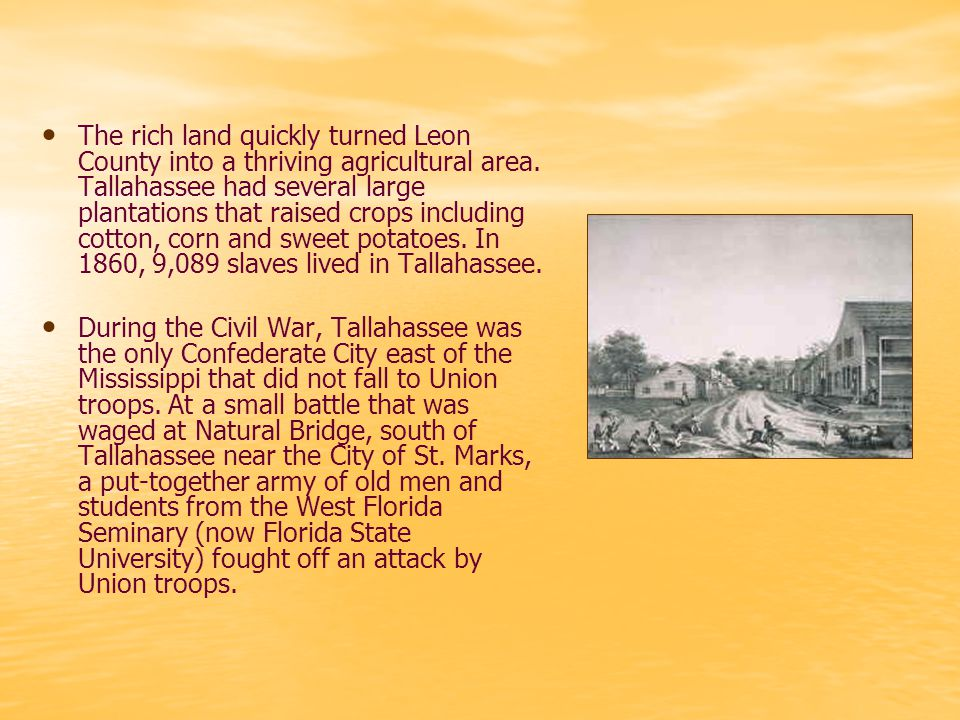 The rich land quickly turned Leon County into a thriving agricultural area.