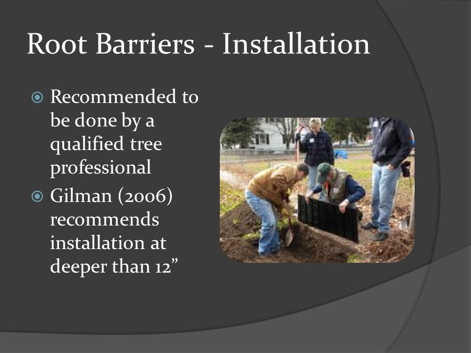 Root Barriers - Installation  Recommended to be done by a qualified tree professional  Gilman (2006) recommends installation at deeper than 12""