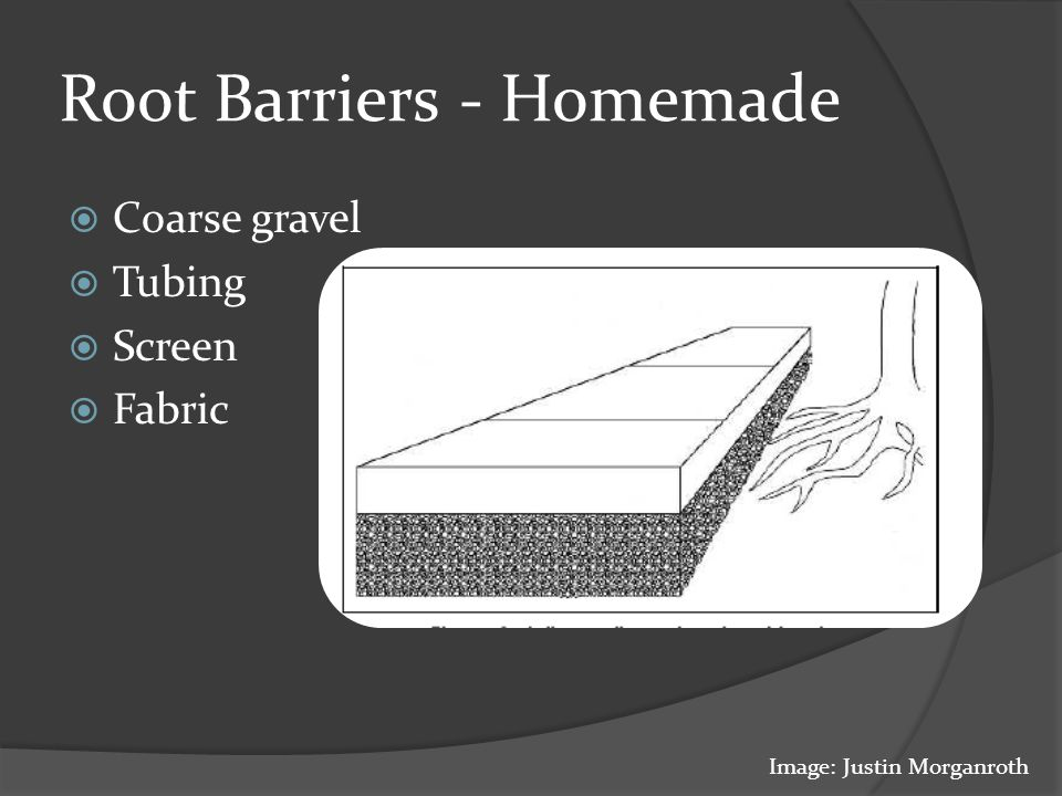 Root Barriers - Homemade  Coarse gravel  Tubing  Screen  Fabric Image: Justin Morganroth