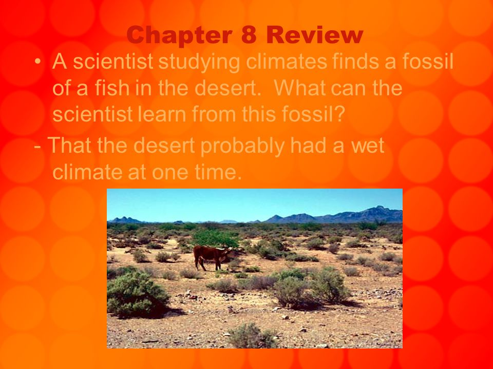 Chapter 8 Review A scientist studying climates finds a fossil of a fish in the desert. What can the scientist learn from this fossil? - That the deser