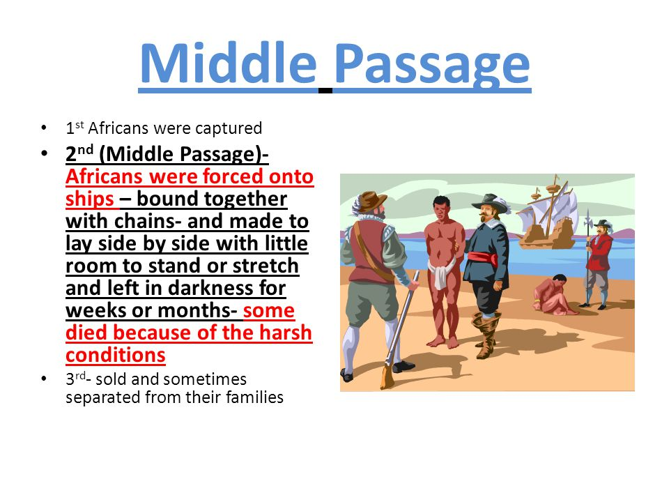 Middle Passage 1 st Africans were captured 2 nd (Middle Passage)- Africans were forced onto ships – bound together with chains- and made to lay side b
